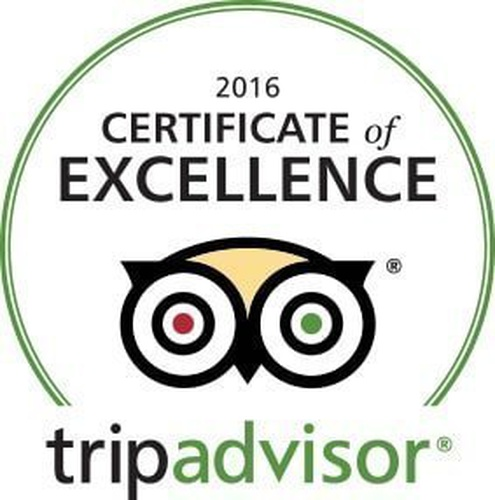 Trip advisor certificate of excellence 2016 فندق اريبيان كورتيارد فندق وسبا بر دبي